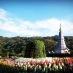 A Day Trip to Doi Inthanon: Everything You Need to Know